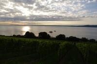 Sunrise at Lake Neuchâtel