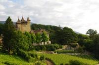 Castle Vaumarcus